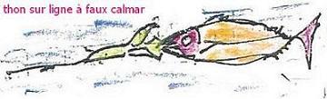 calmar1