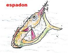 espamarc
