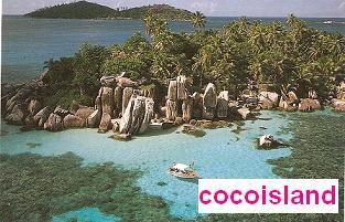 cocoisland1